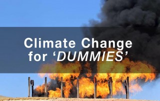 climate change for dummies